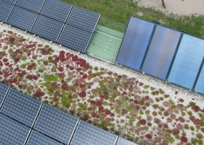 Photovoltaik, Solarmodule, Gründach